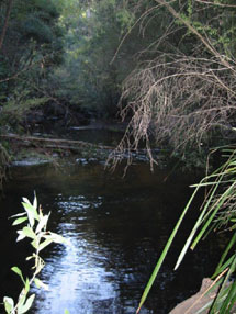 Beautiful flowing river - ideal for fishing and splashing around