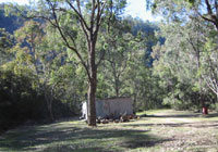 Camping grounds - open & spacious for the kids to explore
